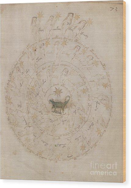 Voynich Manuscript Astro Scorpio Wood Print