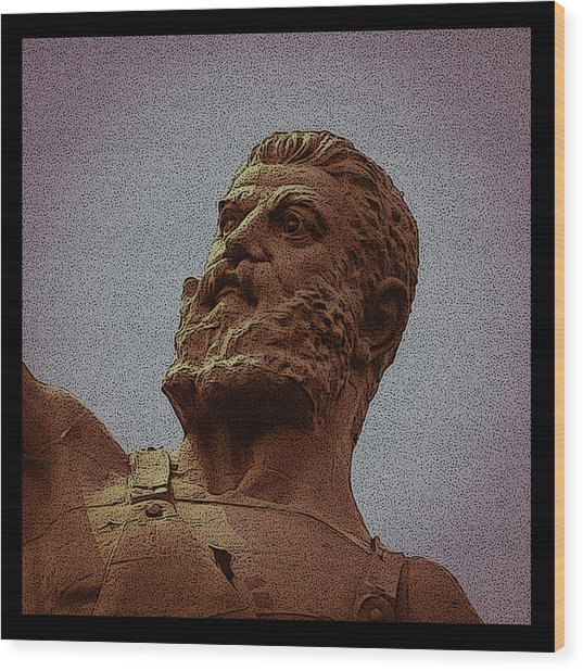 Vulcan Poster Wood Print