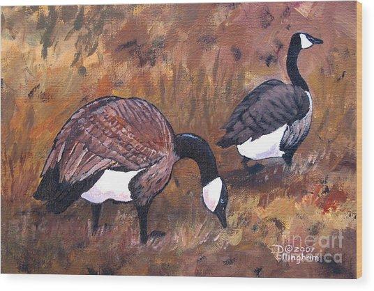 Waddle Waltz Wood Print by Diane Ellingham