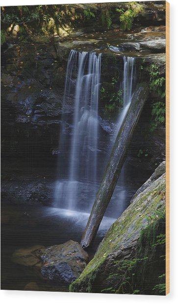 Wagon Road Falls Detail 2 Wood Print