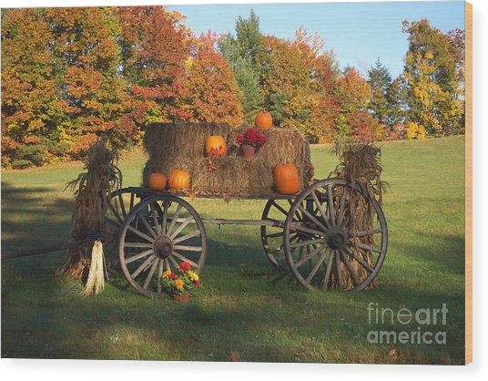 Wagon Sunny Fall Day Wood Print