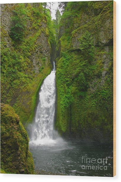 Wahclella Falls Wood Print by PJ  Cloud