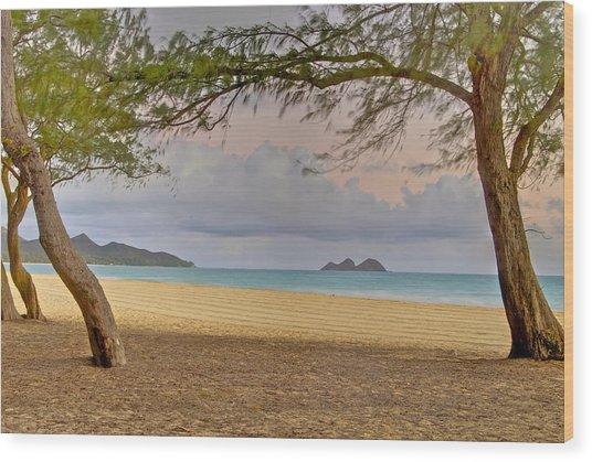 Waimanalo Beach Wood Print