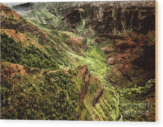 Wood Print featuring the photograph Waimea Canyon by M G Whittingham