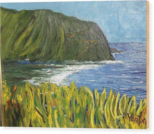 Waipio Valley Bay, Hawaii Wood Print