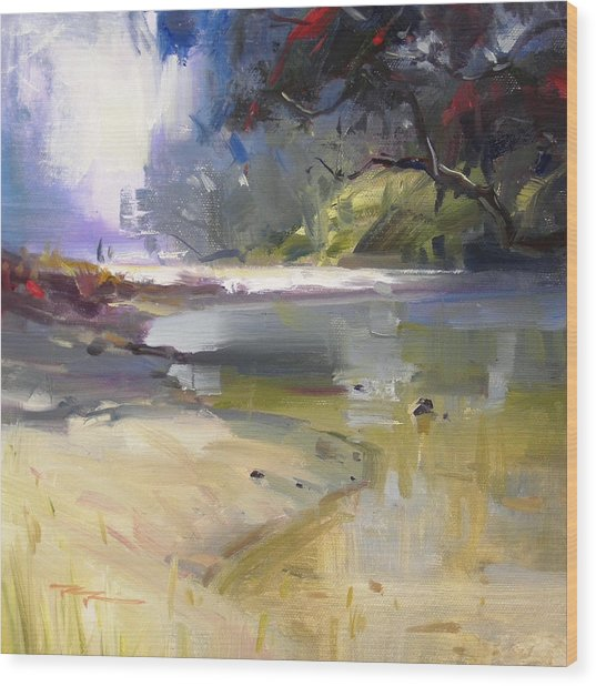 Waipu Cove Wood Print by Richard Robinson
