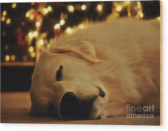 Wood Print featuring the photograph Waiting For Santa by Patti Whitten