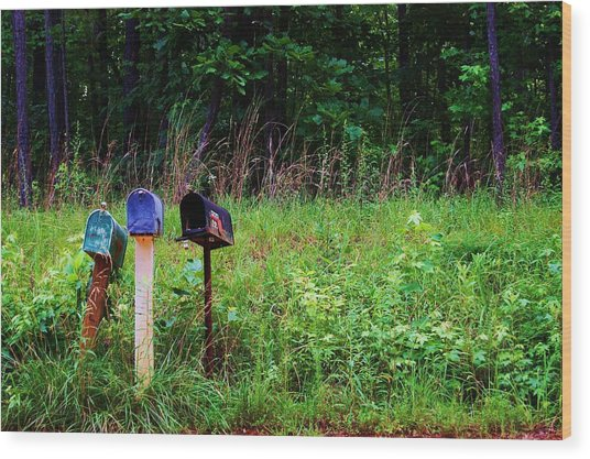 Waiting For The Mail Wood Print by Beverly Hammond
