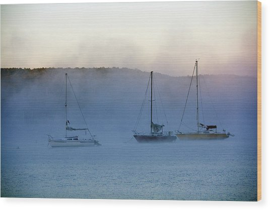 Waiting In The Fog Wood Print
