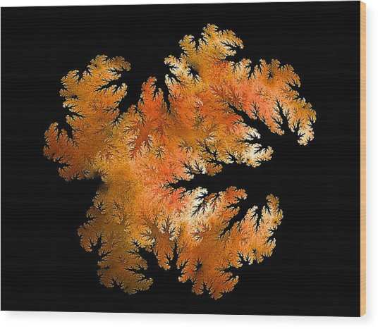 Waking In Mandelbrot Forest-2 Wood Print