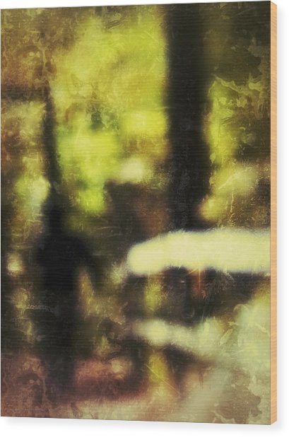 Wood Print featuring the photograph Walk In The Park by Al Harden