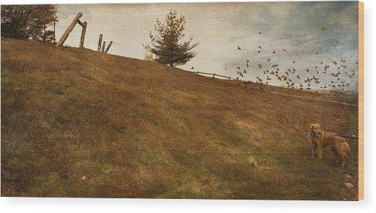 Walk Wood Print by Inesa Kayuta