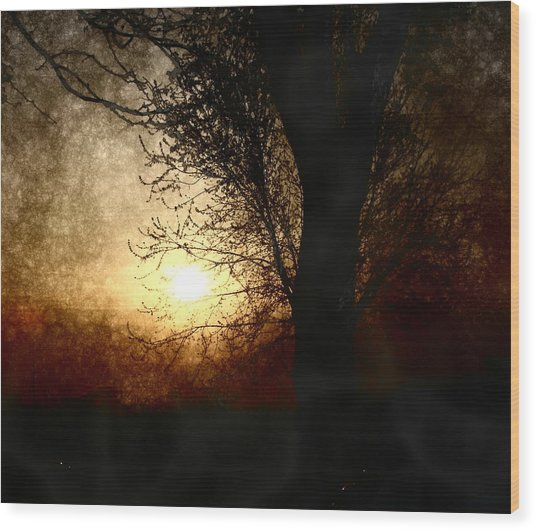 Walk Quietly Into The Night With Me. Wood Print