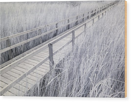 Walk Through The Marsh Wood Print