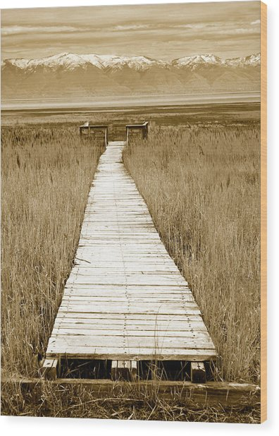 Walk With Me 1 Wood Print