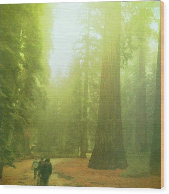 Walking By Giants Wood Print