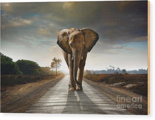 Walking Elephant Wood Print