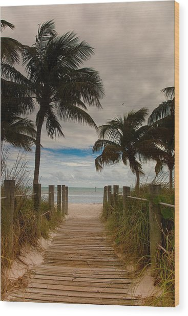 Walking To The Beach Wood Print by Patrick  Flynn