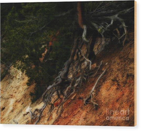 Walking Tree Wood Print
