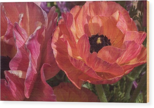 Warm Flower Friends Wood Print by Jean Booth