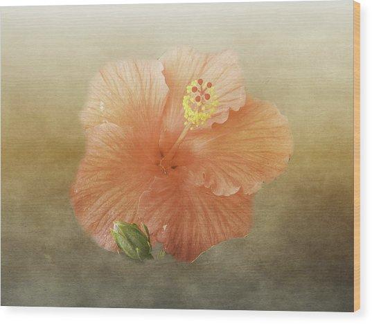 Warm Hibiscus Wood Print