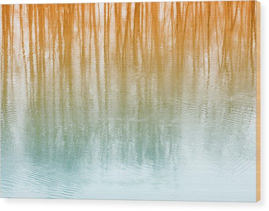 Warm Reflections Wood Print