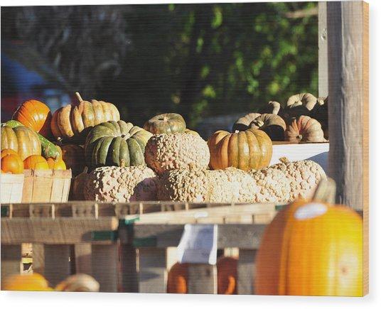 Wart Pumpkins Wood Print by Jan Amiss Photography