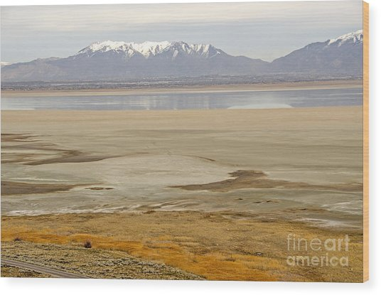 Wasatch Mountains From Antelope Island Wood Print