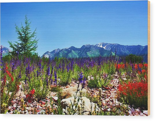 Wasatch Mountains In Spring Wood Print