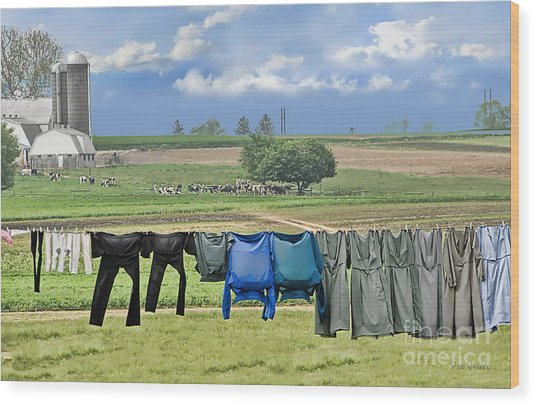 Wash Day In Amish Country Wood Print