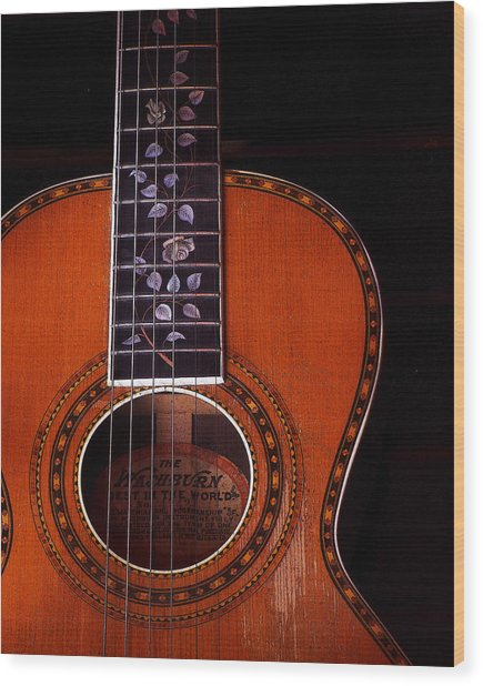 Washburn Guitar Wood Print