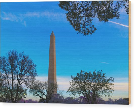 Washington Monument Wood Print by Heidi Pix