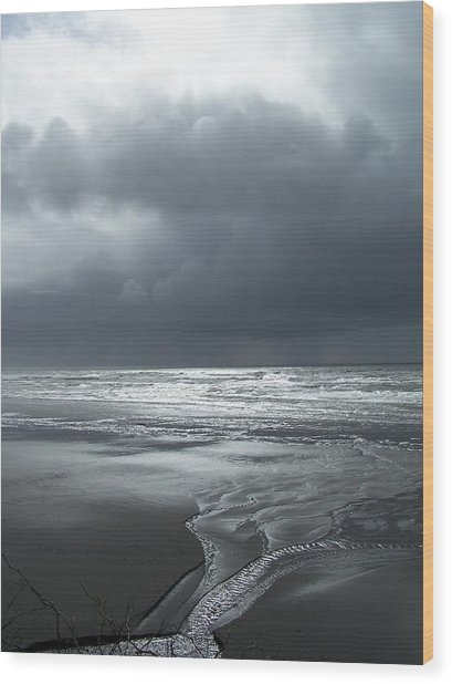 Washington Shore Wood Print by Gene Ritchhart