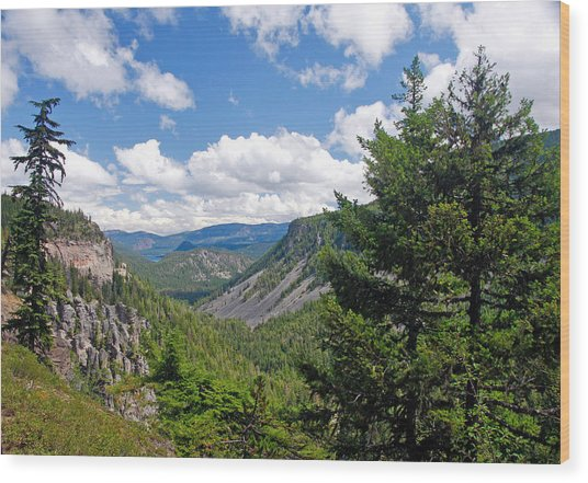 Washington State Vista On Us Hwy 12 - Nr 1 Wood Print by Stephen Bonrepos