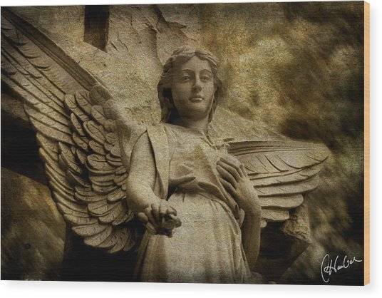 Watching Over Us Wood Print by Christine Hauber