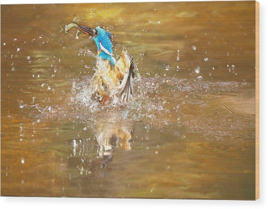 Water Birth Wood Print by Charl Roux