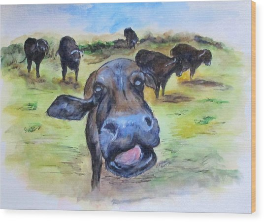 Water Buffalo Kiss Wood Print