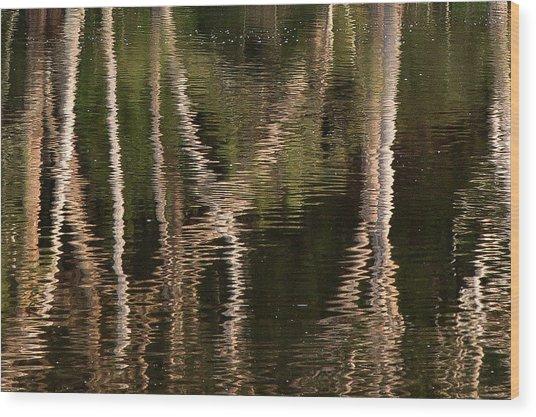 Water Bumps Wood Print by David Benson