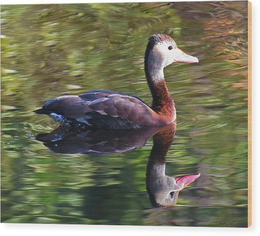 Water Color Wood Print
