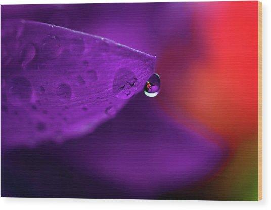 Water Drop Reflections With Purple II Wood Print