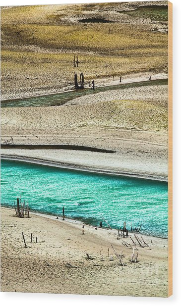 Water Edge 5 Wood Print by Emilio Lovisa