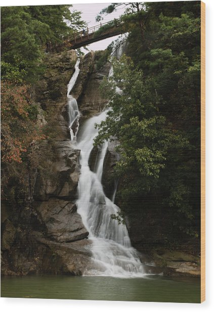 Water Fall 3 Wood Print