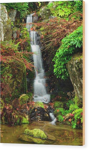 Waterfall At Kubota Garden Wood Print