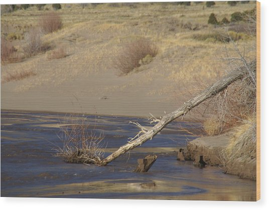 Water Flow In The Great Sand Dunes Wood Print