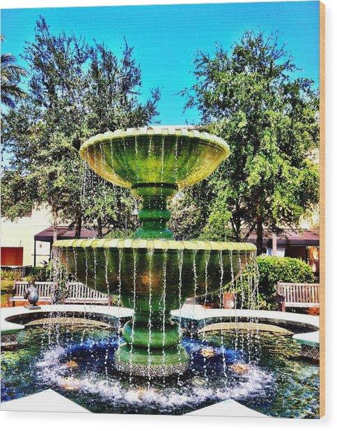 Water Fountain Wood Print