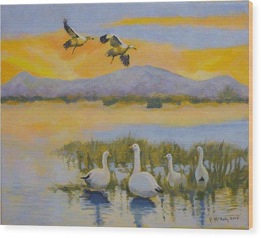 Water Fowl, Sutter Buttes Wood Print