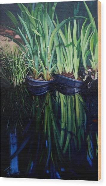 Water Garden Serie-h Wood Print by Patricia Reed