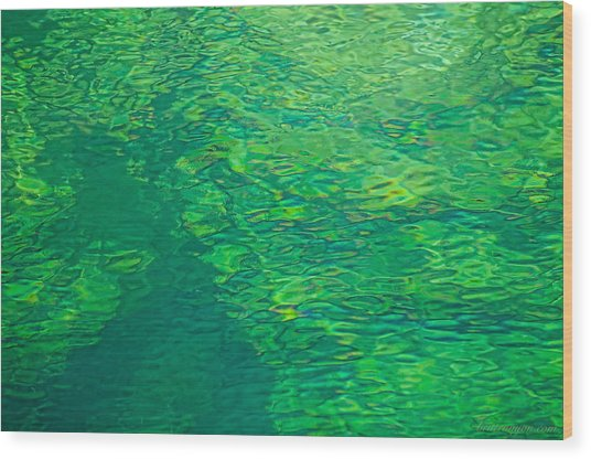 Water Green Wood Print