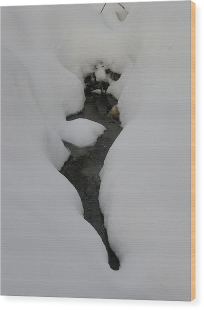 Water In Snow Wood Print by Richard Mitchell