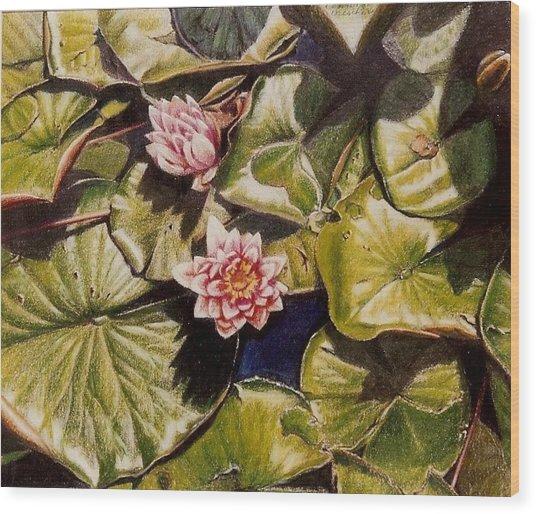 Water Lilies On The Ringdijk Wood Print by Constance Drescher